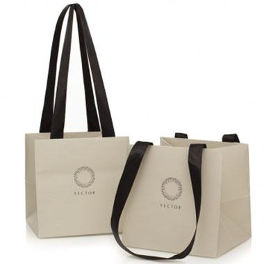 Ribbon Handle Laminated Paper Bag LPB-107