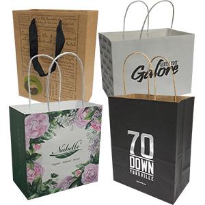 Kraft Paper Bags Icon
